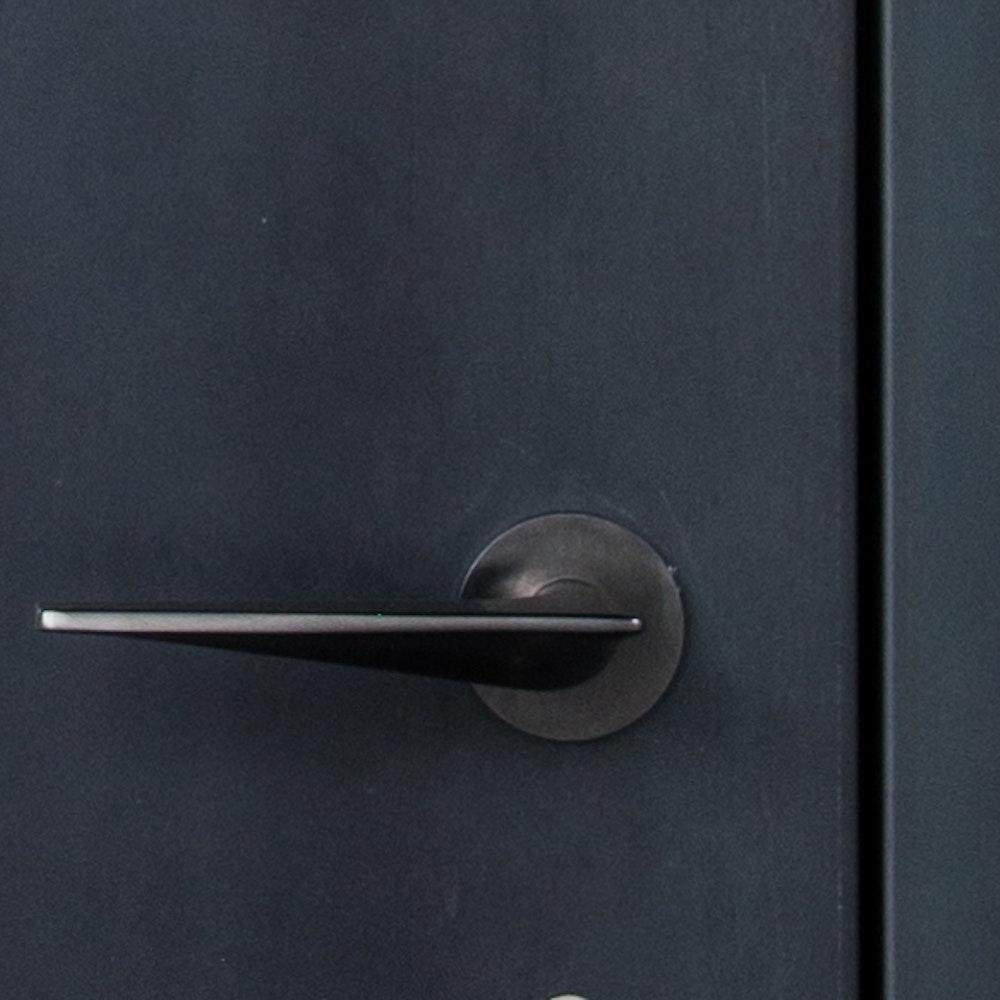 black steel interior door
