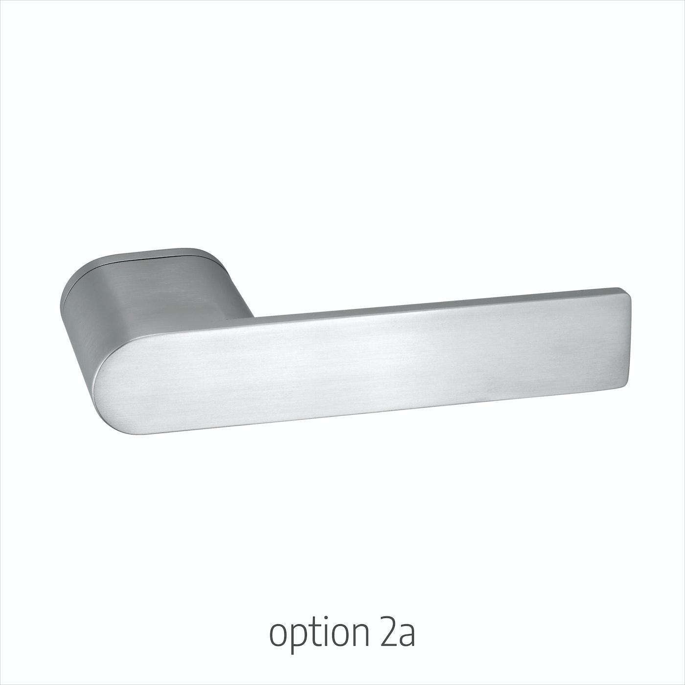 option 2a
